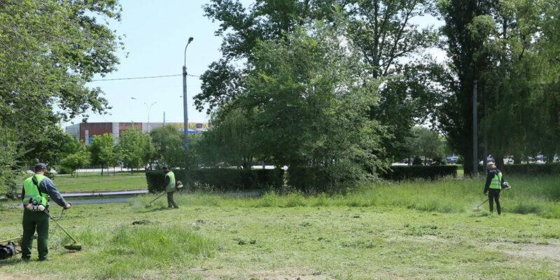 В Волгодонске приступили к активному покосу травы, в том числе на неучтенных территориях